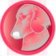 ikony_joy_dog-salmon03