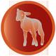 ikony_joy_lamb-fillet01