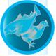 ikony_joy_fish-chicken01
